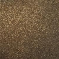 Bronze 081